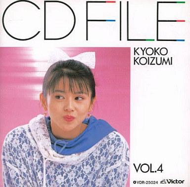 koizumi2